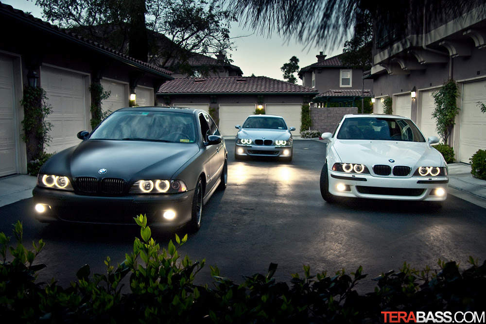 Photo Of The Day: BMW M5 Terrabass Style